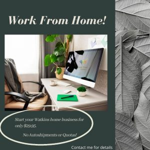 watkins home business